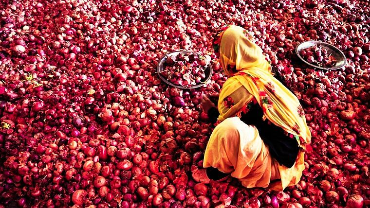Navi Mumbai: Onion prices drop to Rs 8 per kg at wholesale, retail price too drops