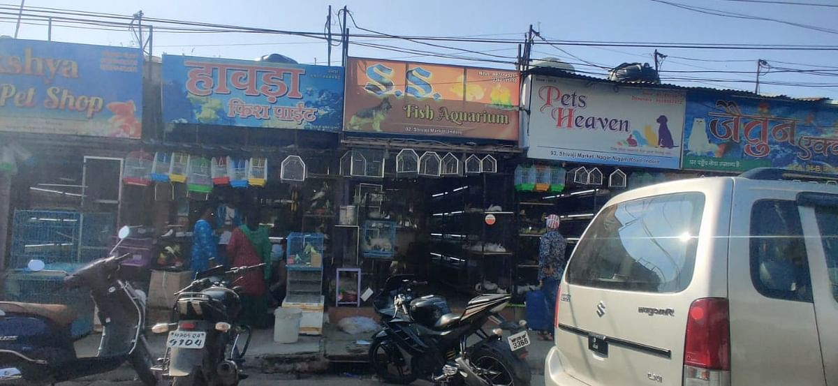 Pet shops in Shivaji market
