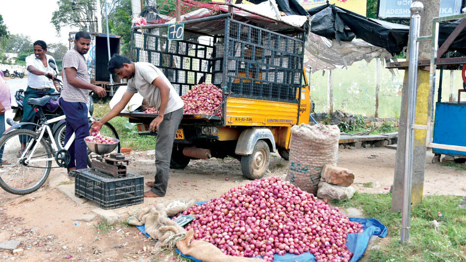 Onion prices likely to increase during the festive season as supply dips by 40 percent