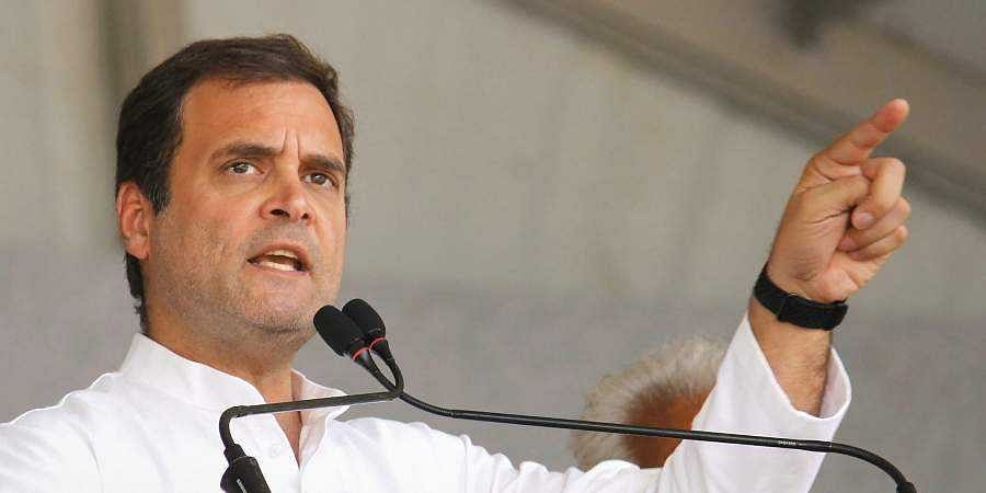 No govt in the world can stop farmers fighting 'battle of truth': Rahul Gandhi