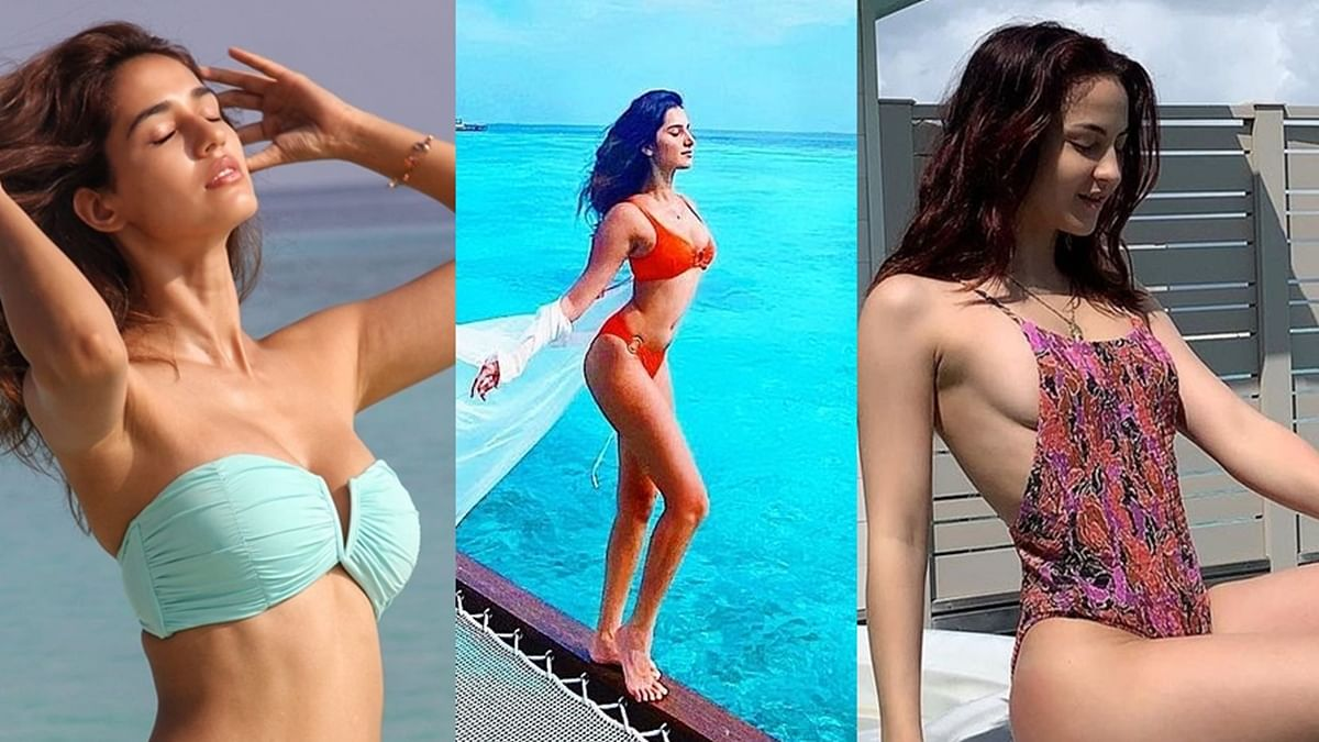 From Disha Patani to Tara Sutaria - B-town divas and their sexy 'Biggini' shoot