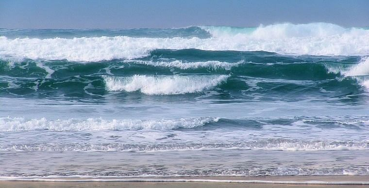 Maha sets up panel for Ocean Applied Sciences varsity