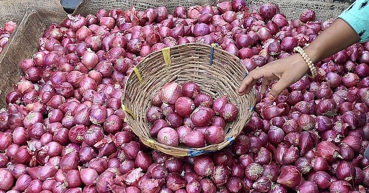 Onion price in Pune comes down slightly, potato remains same