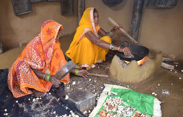 Art of making Makhana: Watch this exhibit by IGRMS showing traditional technique of making fox nut