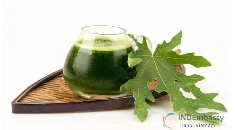 Papaya leaf juice: An elixir for good health
