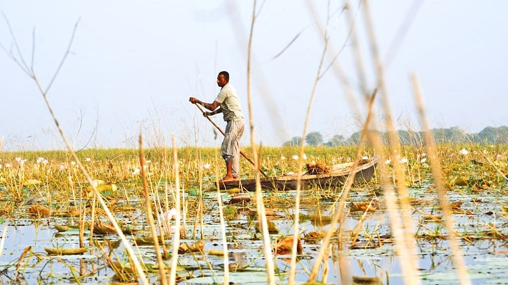 Bihar's first Ramsar site: Kabartal in Begusarai becomes wetland of International importance