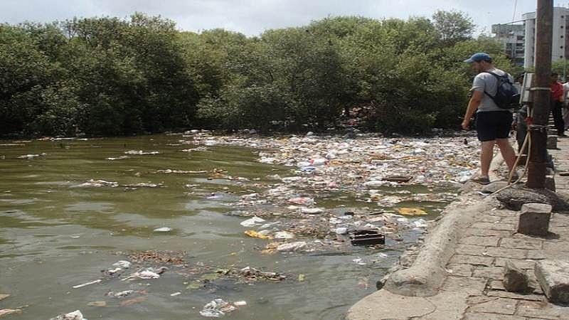Brihanmumbai Municipal Corporation eyes consultants to breathe new life in Mithi
