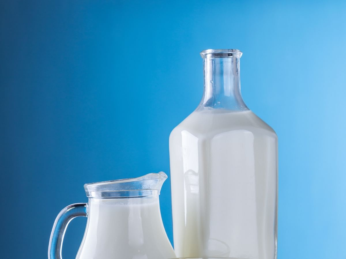 ICRA expects organised dairy industry to see growth of up to 5% FY21