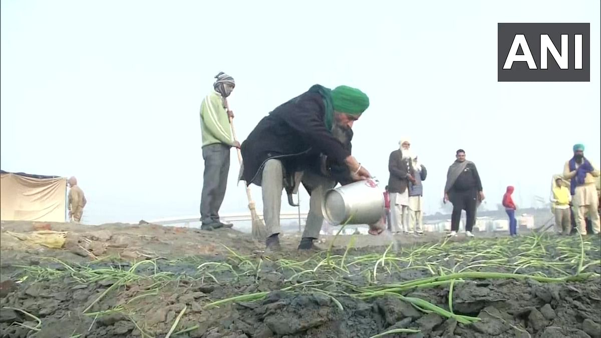 Protesting farmers take up farming at Burari's Nirankari Samagam ground, plan to grow onions