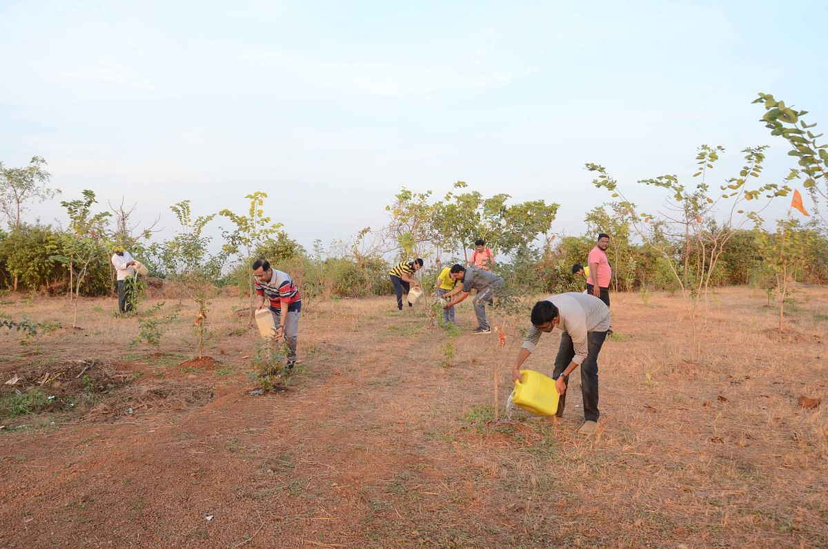 Thane: Villagers undertake initiative to water thousands of planted trees at Umbarli