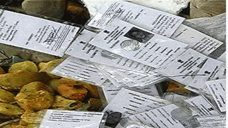 117 voter IDs found dumped in Thane's Ulhasnagar, probe on