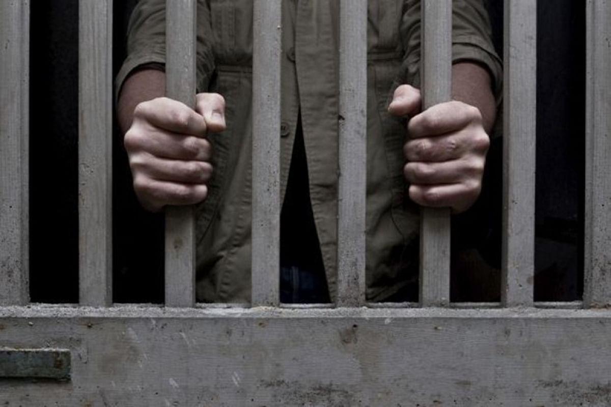 "Gautam Navlakha ""near-blind"" without glasses in jail; partner says jail returned specs"
