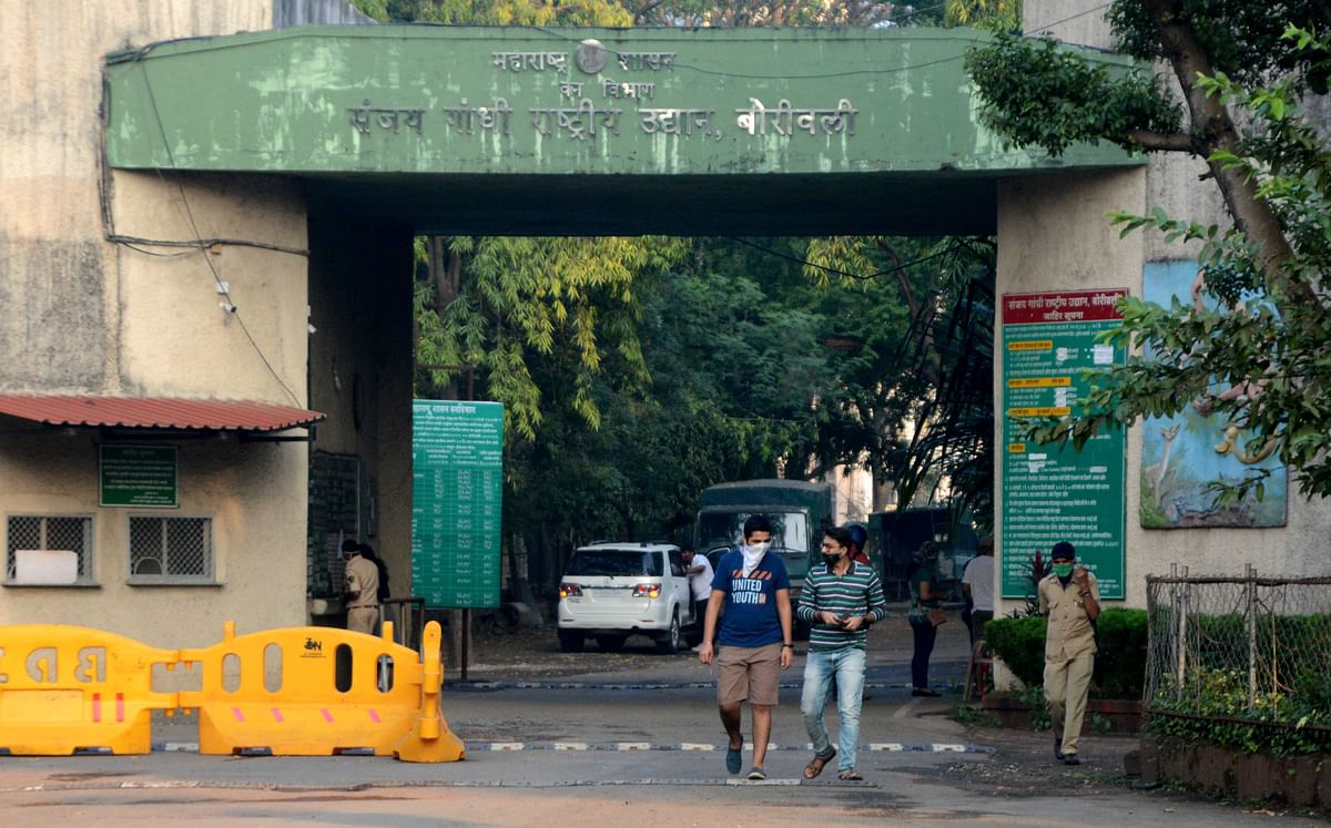 Sanjay Gandhi National Park: Mumbai's urban wilderness reopens its gate for tourists