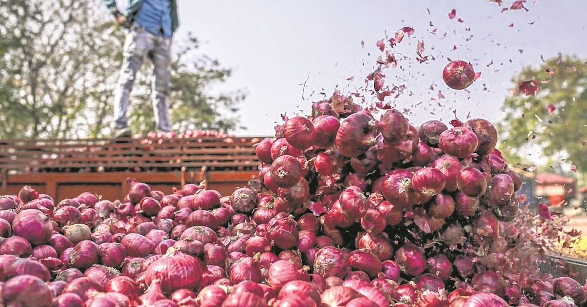 Onion growers worry over falling prices due to higher arrival of produce