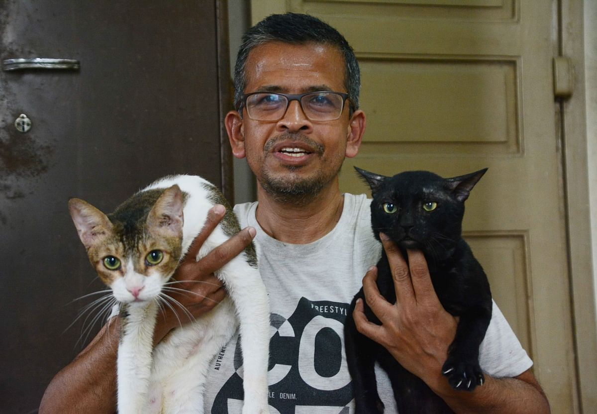 Royce Patel, Animal rescuer