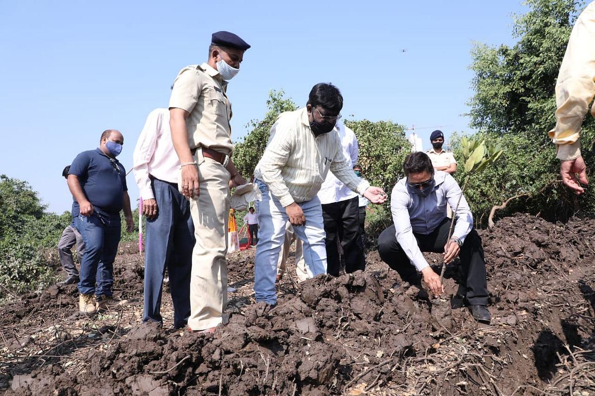 Mumbai Metro Rail Corporation initiates compensatory mangroves plantation