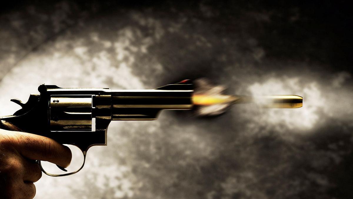 Uttar Pradesh: Meerut man kills sister after argument over pet dogs