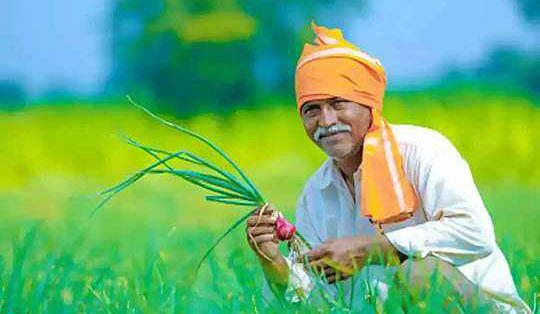 Madhya Pradesh: Farmers in Nagda Tehsil deprived of Kisan Samman Nidhi benefits, accuse officials of double standards