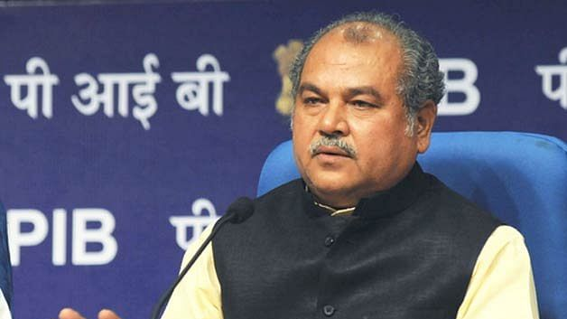 'Govt has no ego': Agri minister Narendra Singh Tomar urges protesting farmers to continue talks