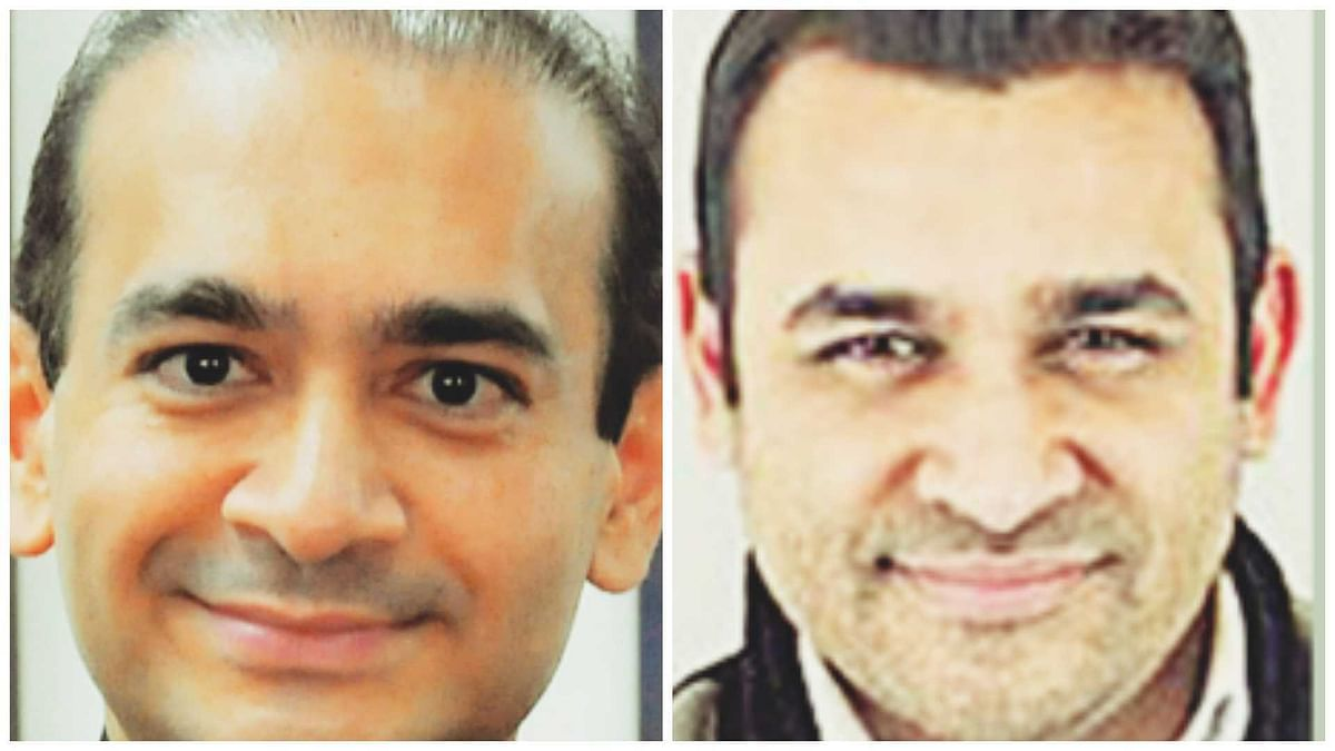 US: Fugitive Nirav Modi's brother Nehal Modi charged in $2.6mn fraud in New York
