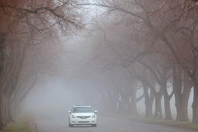 Madhya Pradesh: Foggy weather in western areas; intermittent drizzle in many parts bring in the chill