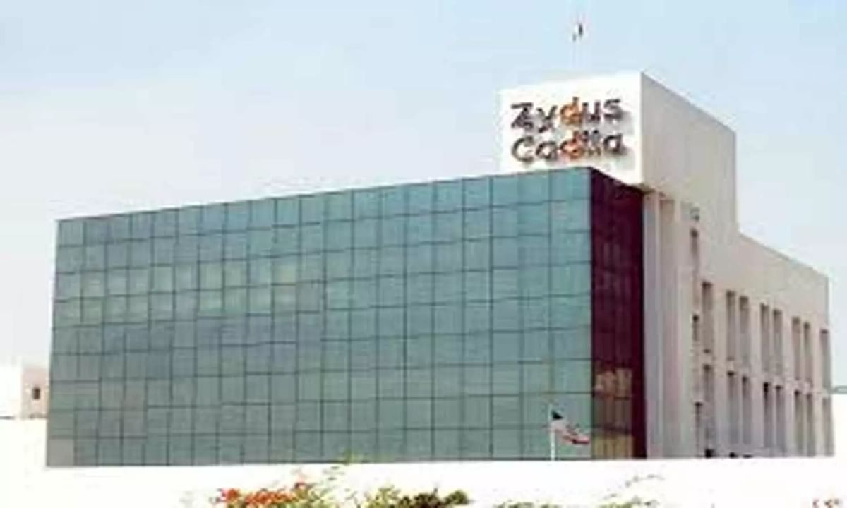 Zydus Cadila gets USFDA approval to market anti-arrhythmic drug