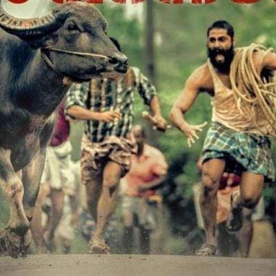 CinemaScope: From Jallikattu to Soorarai Pottru, regional cinema finds new audience base on OTT