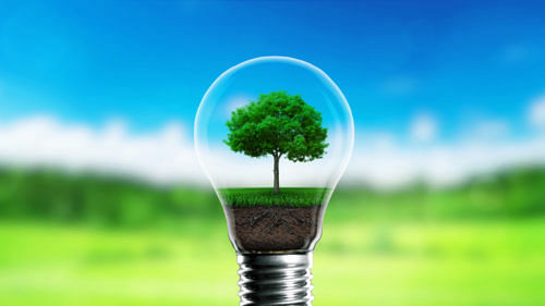 National Energy Conservation Day 2020: What are the initiatives taken by the government?