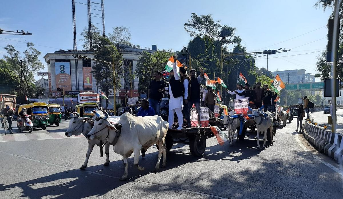 Bullock cart rally taken out by Congressmen in Indore on Saturday