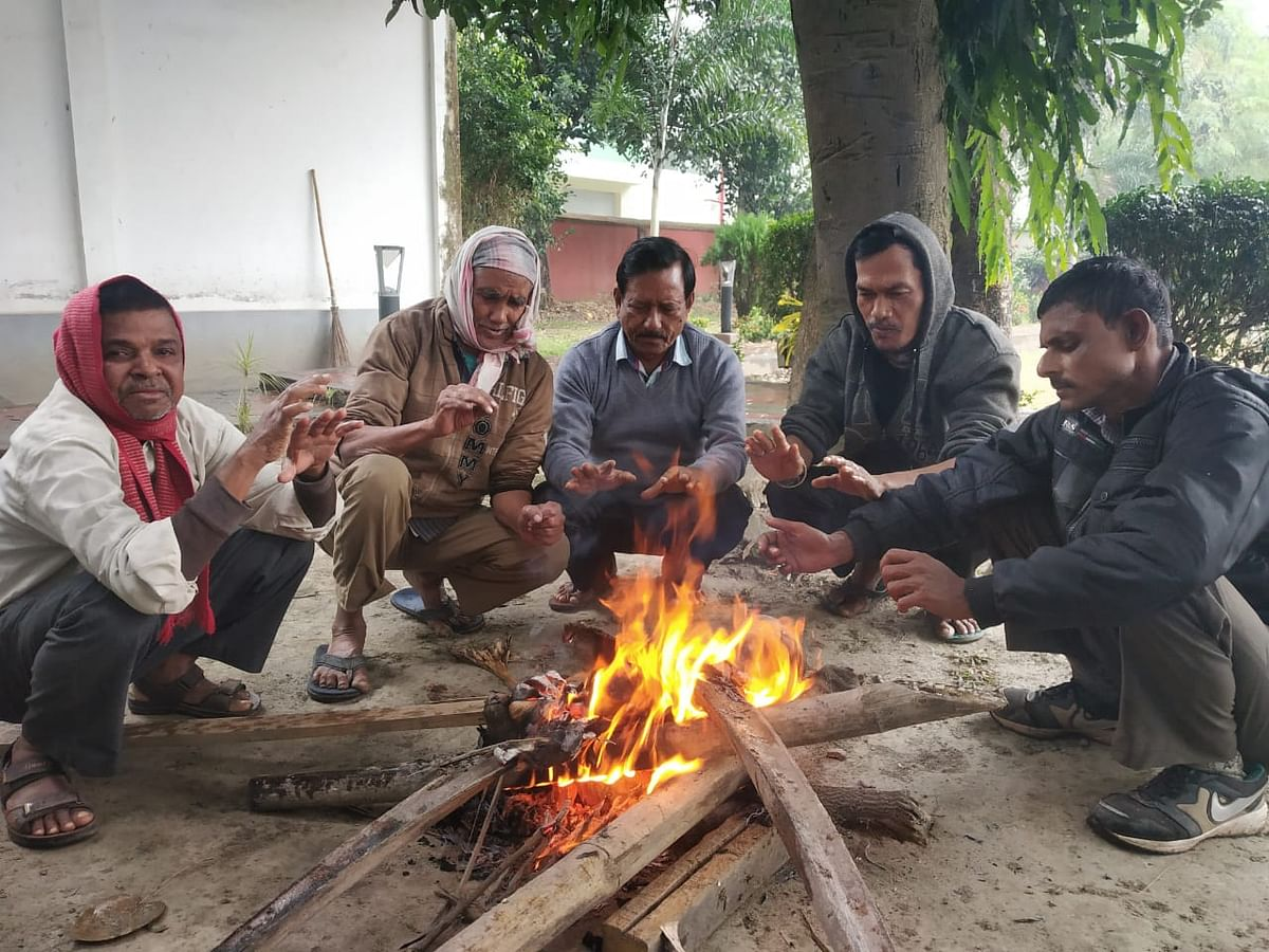Madhya Pradesh: Several parts of state experience biting cold, dry and chilly winds from north India prevail