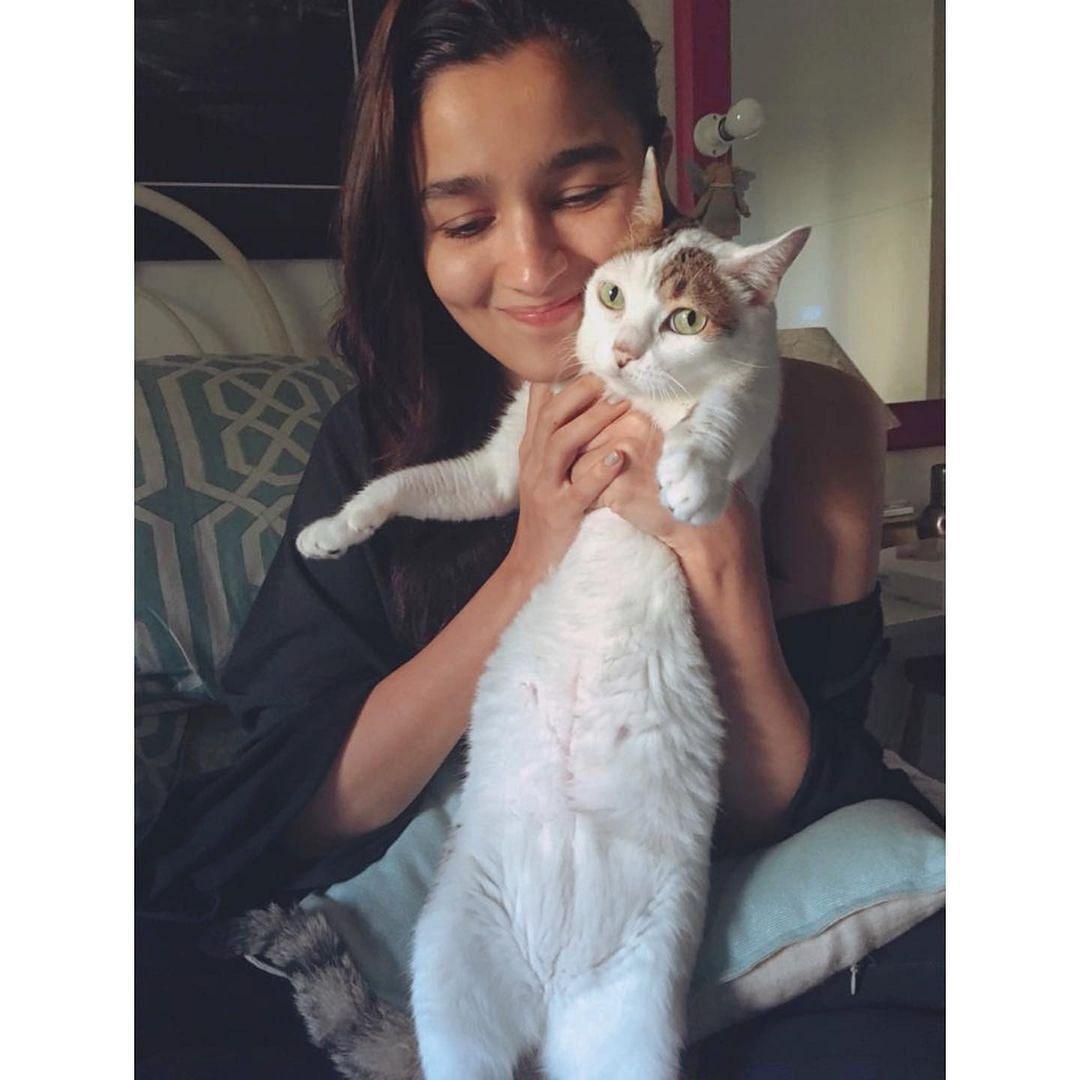'Goodbye my angel': Alia Bhatt mourns the loss of pet cat Sheeba
