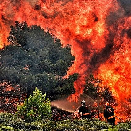 Scientists assess the influence of human activities on wildfire outbreaks