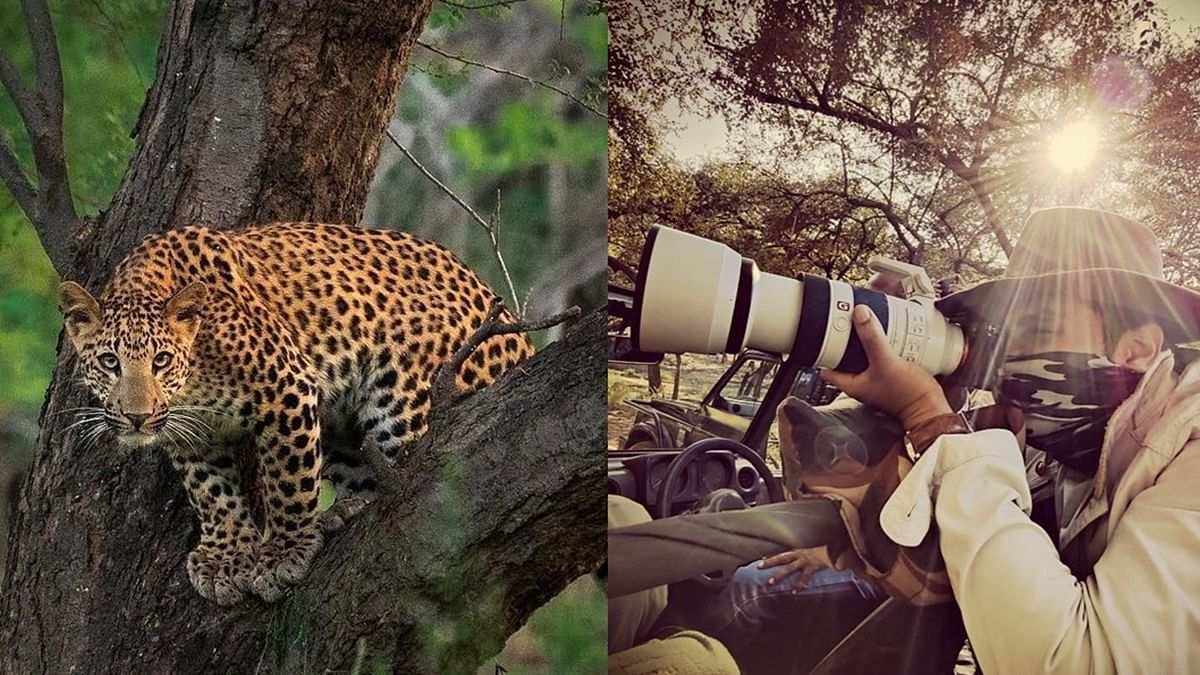 In Pics: Randeep Hooda stuns the internet with his wildlife photography skills