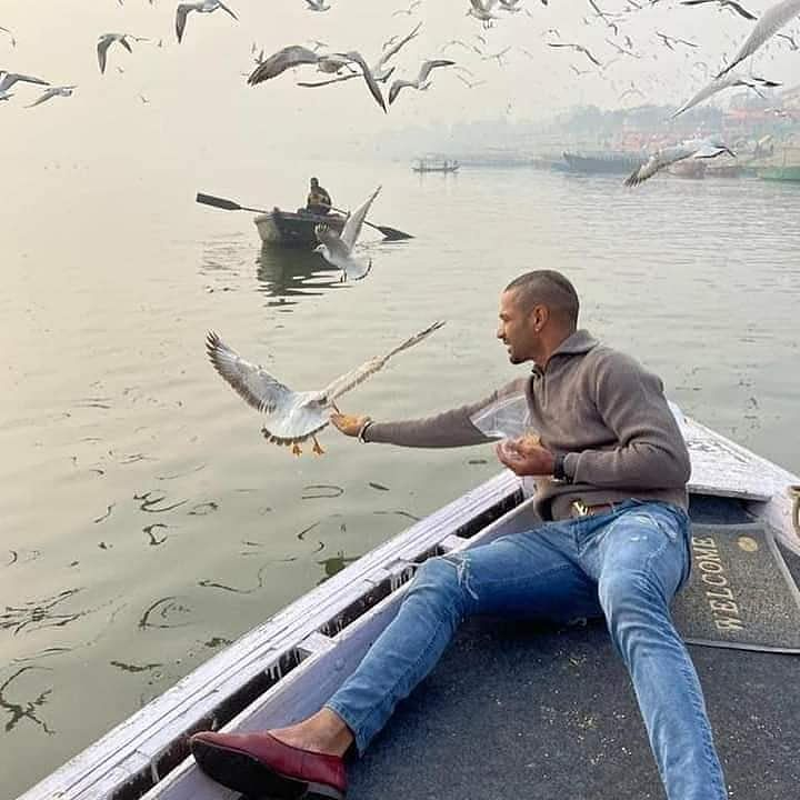 Bird flu: Action against boatman after picture of Shikhar Dhawan feeding birds in Varanasi goes viral