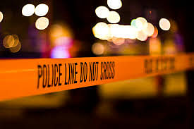 Indian-origin Yaganathan Pillay 'Teddy Mafia' killed in South Africa; suspected killers beheaded