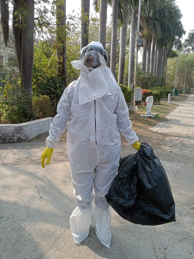 An employee collected dead crows after wearing PPE kit to avoid  spread of bird flu in Daly College on Saturday