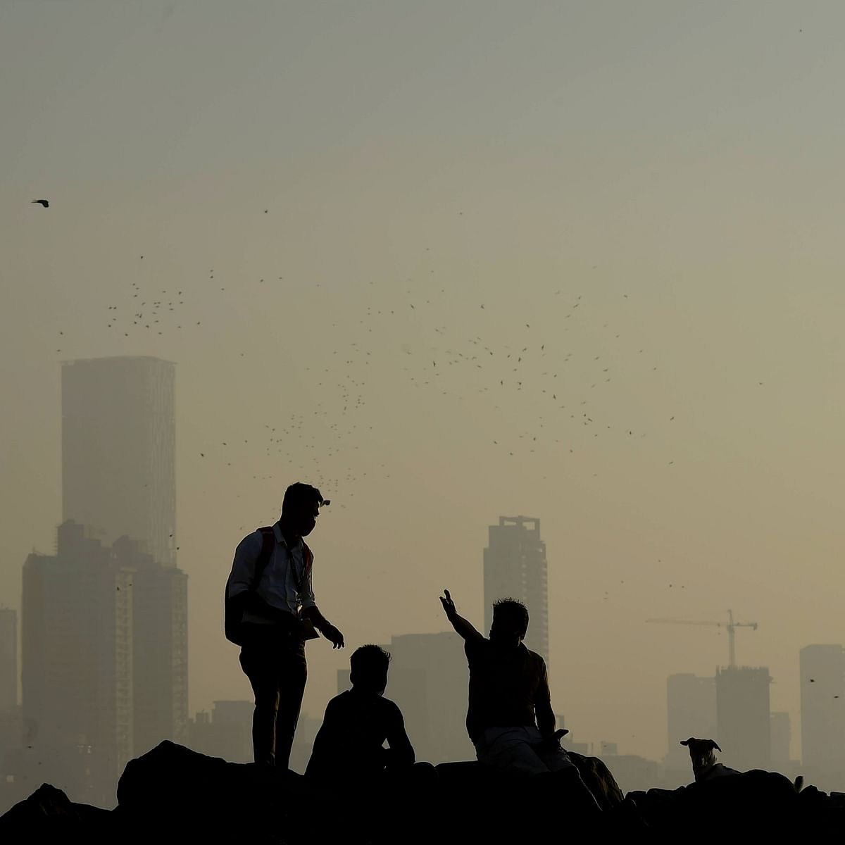 Mumbai weather update: At 14.8 degrees Celsius, city records lowest temperature of the year