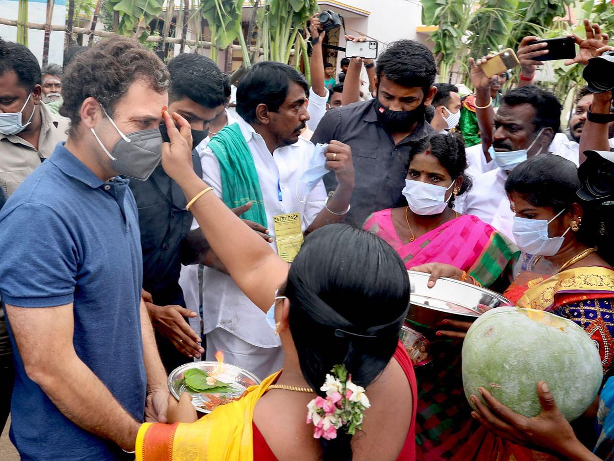 Rahul Gandhi visits Tamil Nadu to watch Jallikattu; celebrates Pongal