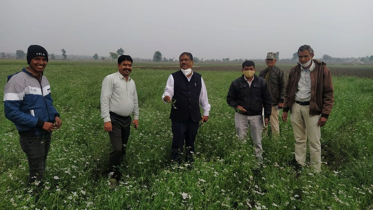 Officials conducting survey at agriculture field in the village near Garoth tehsil of Mandsaur district