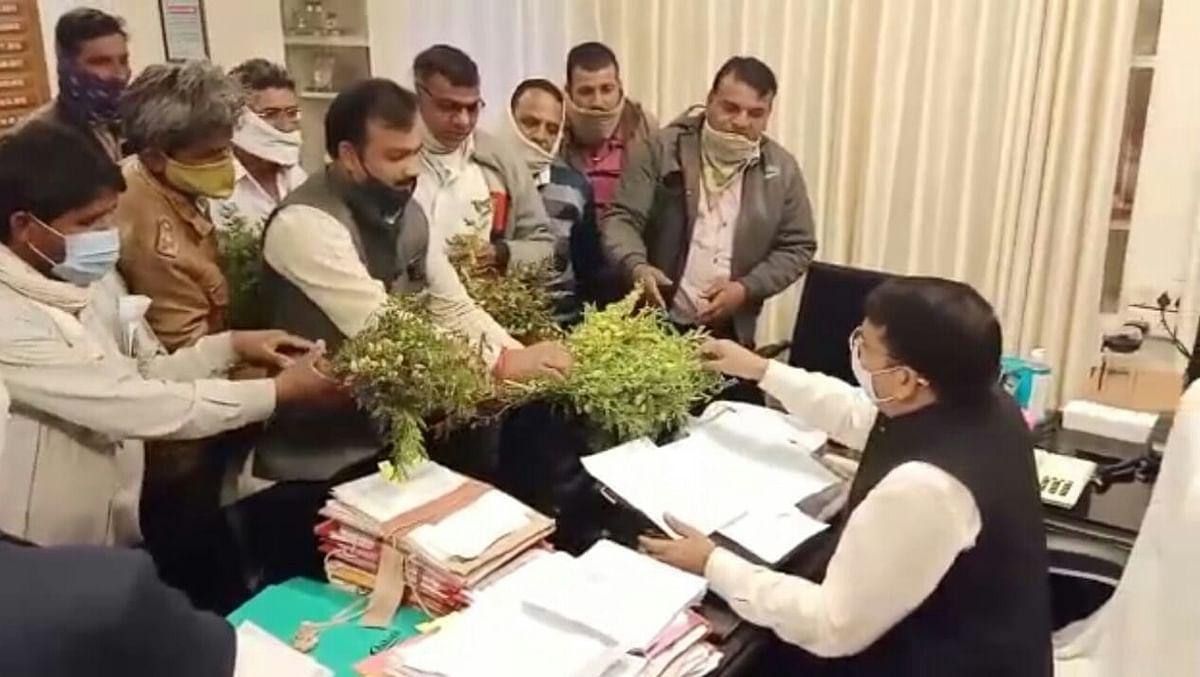 Madhya Pradesh: Farmers submit memorandum to Neemuch collector, demand insurance for damaged crops