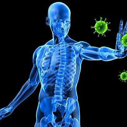 Cancer can be killed by body's own immune system, new study claims
