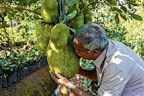 Learn innovation, industry from Kerala, Goa CM tells farmers
