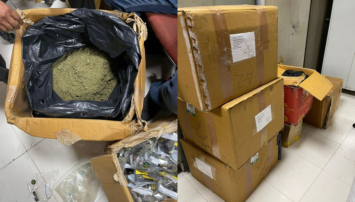 Mumbai: NCB seizes whopping 200 kg of marijuana; British national among three arrested