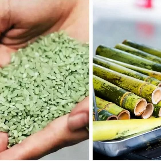 Bamboo rice: The next superfood that can boost your health and well-being