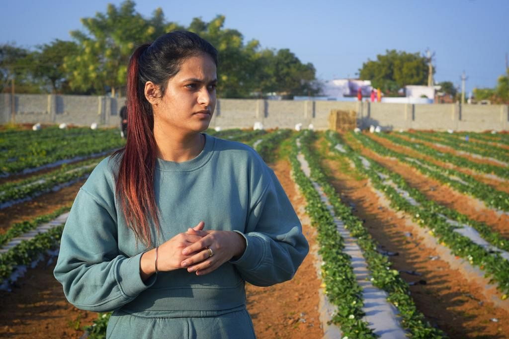 UP: 23-year-old Gurleen Chawla brings 'strawberry revolution' in the parched lands of Bundelkhand