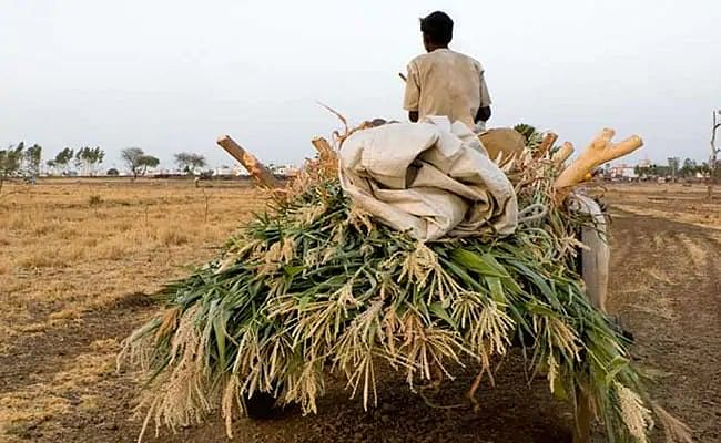 Madhya Pradesh: Auction properties of traders who don't pay farmers' dues: CM