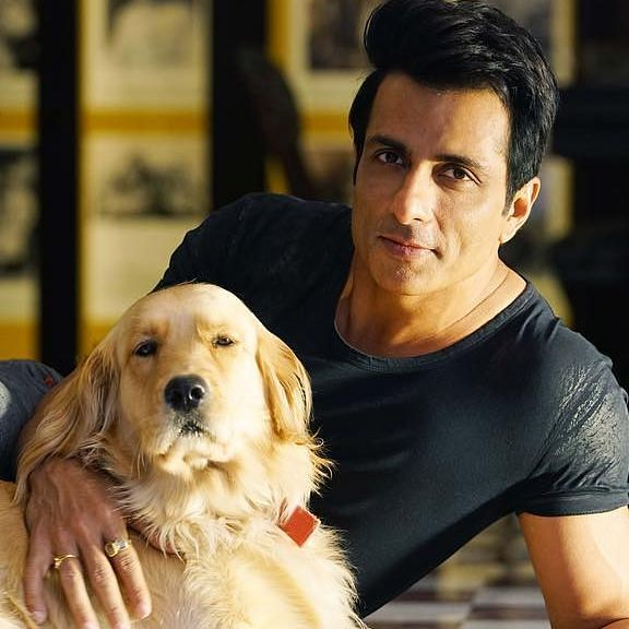 Sonu Sood's appeal: 'Keep animals off the plates on Valentine's Day'