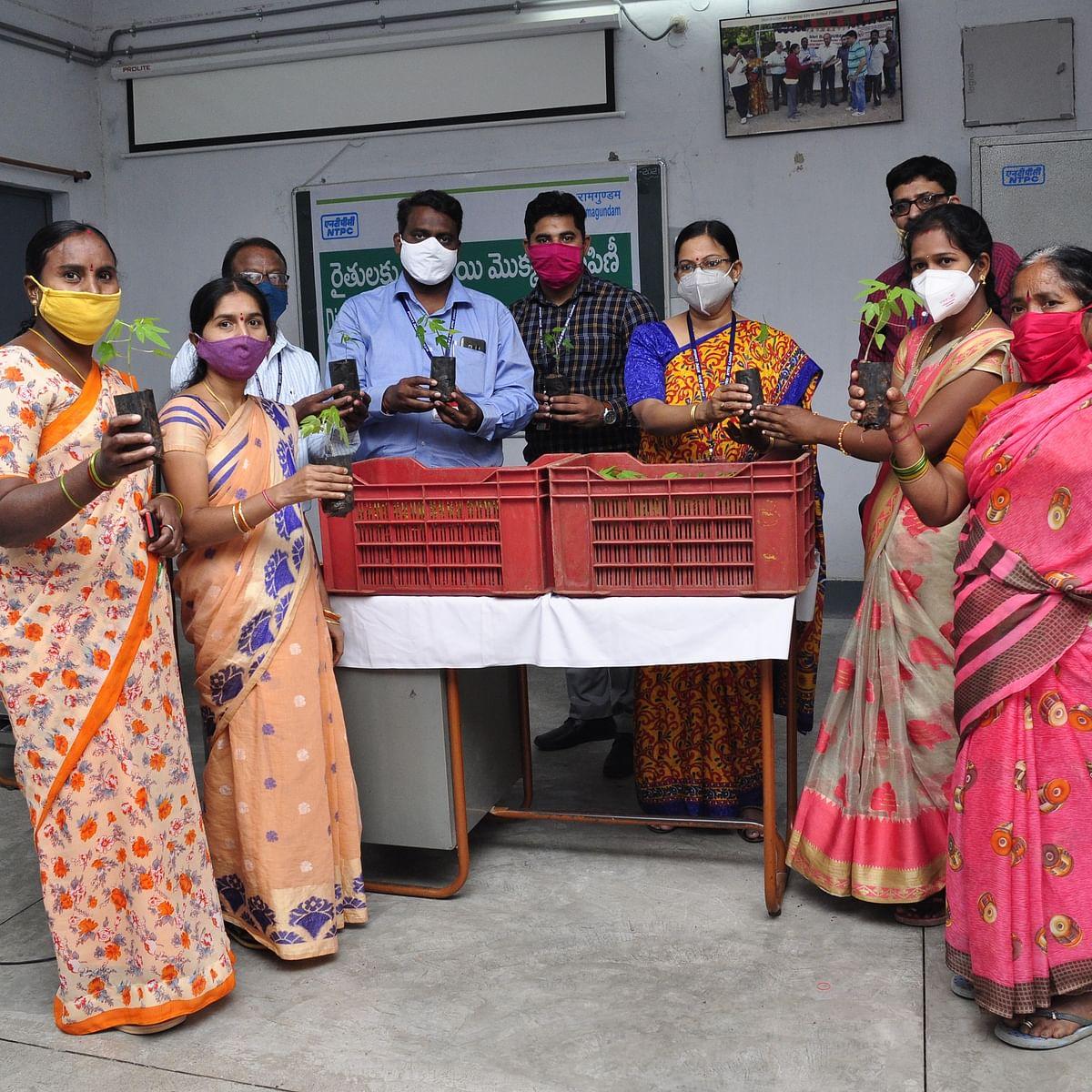 NTPC-Ramagundam distributes 25K papaya saplings among local farmers