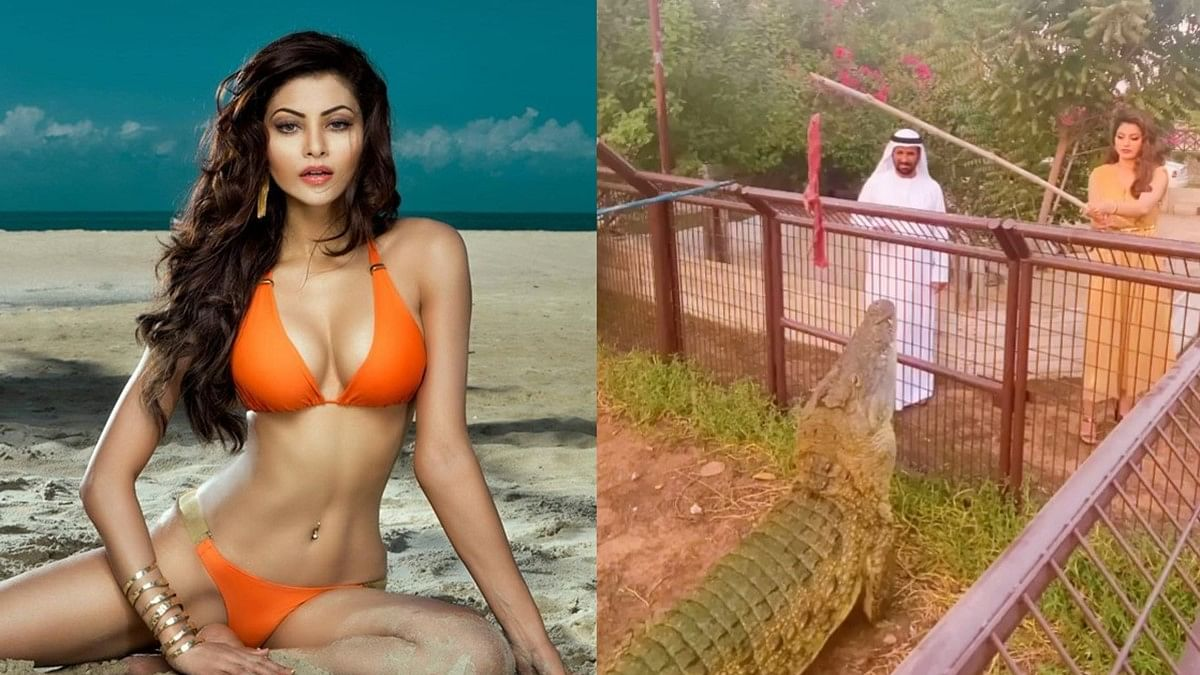 Watch: Urvashi Rautela celebrates 34M followers on Instagram by feeding a crocodile!