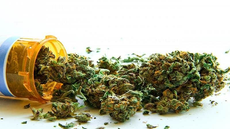 Mumbai: Two held with cannabis in Kandivali